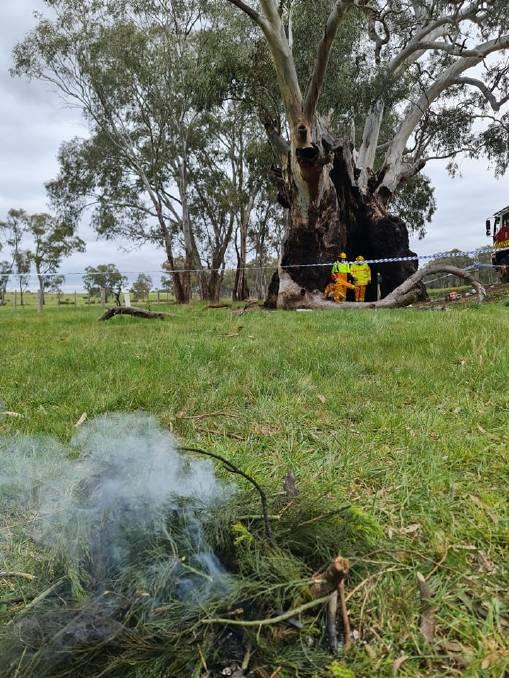Gerettet: Der Baum wurde am späten Freitagnachmittag vor dem Feuer gerettet.  Der Schaden wird begutachtet.  Indigene Vertreter hielten am Freitagnachmittag eine Rauchzeremonie ab, um den Ort von Böswilligkeit zu säubern.  Bild: Bonnie Chew.