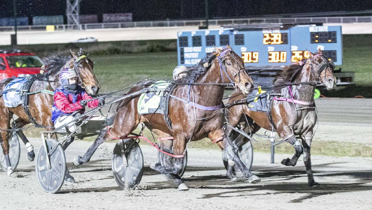 Demon Delight leads home a Vicbred Super Series 3yo heat trifecta for Emma Stewart at Kilmore on Thursday night. Picture: Stuart McCormick, Harness Racing Victoria