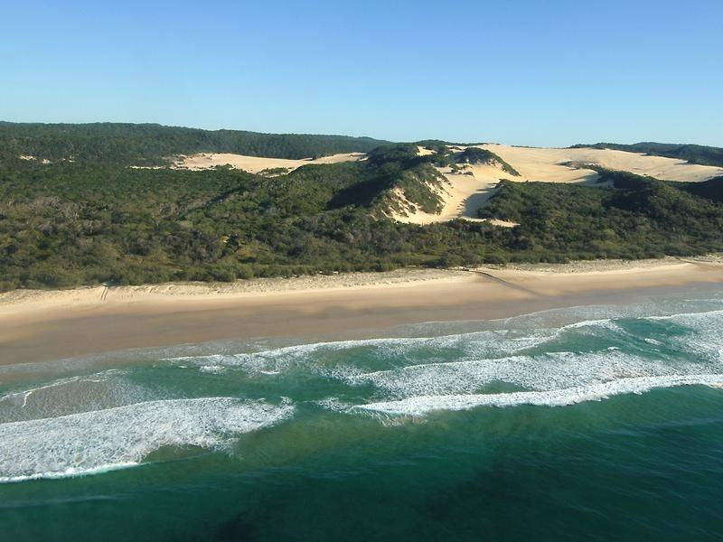 A spearfisherman has been killed in a shark attack off Queensland's Fraser Island.